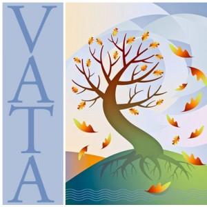 vata_big